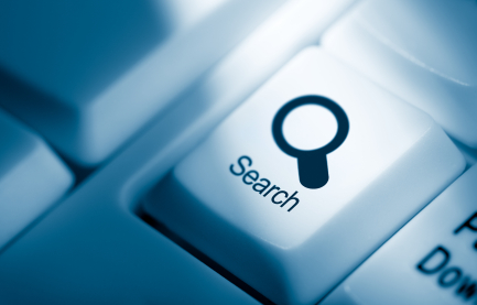 everyone-does-online-search