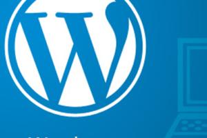 http://shirsendu.com/wp-content/uploads/2016/10/WordPress-Extensions-300x200.png