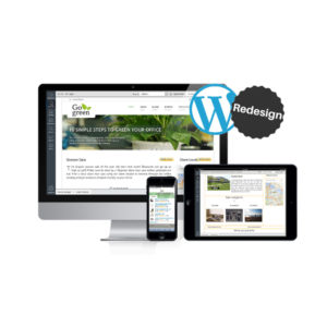 Why You Should Redesign Your Small Business Website in WordPress?
